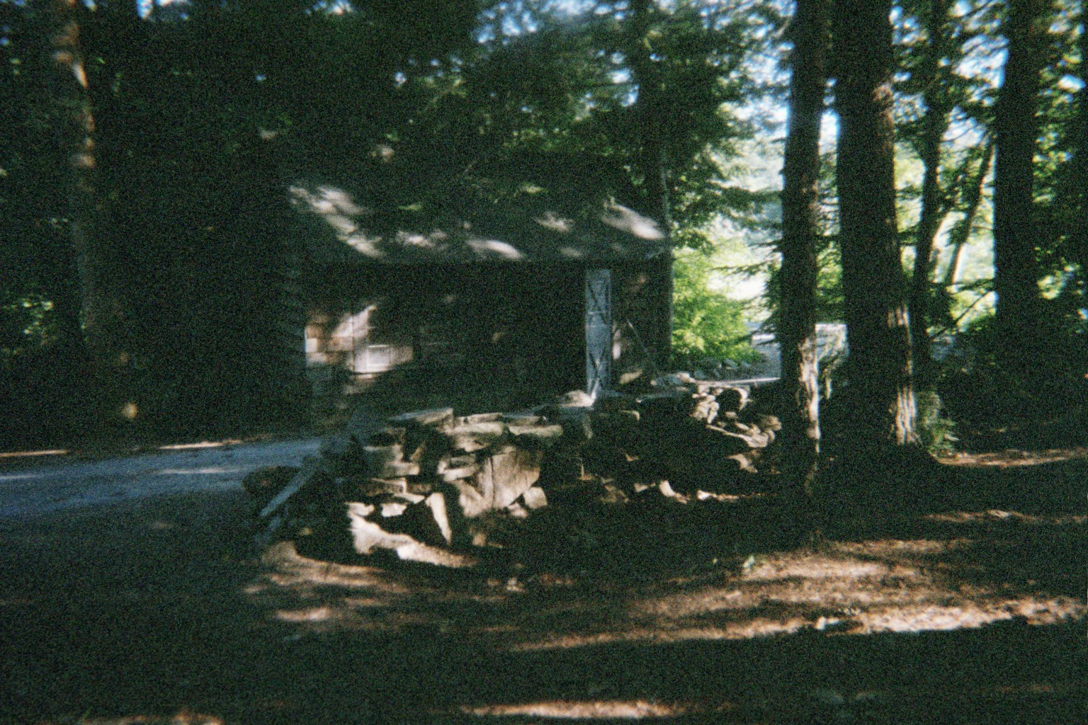 Neddie's Cabin view from back of the house facing the road